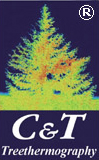 Catena & Thermography